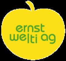 logo-ernst-welti